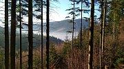 V okolí Lysé hory byl v posledních týdnech několikrát spatřen medvěd.