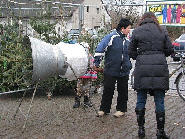 Vánoční stromky se nyní ve velkém prodávají také ve Frýdku-Místku.