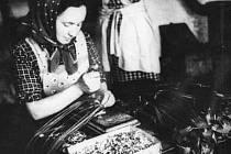 Snímek zachycuje kožedělnou výrobu v Metylovicích.