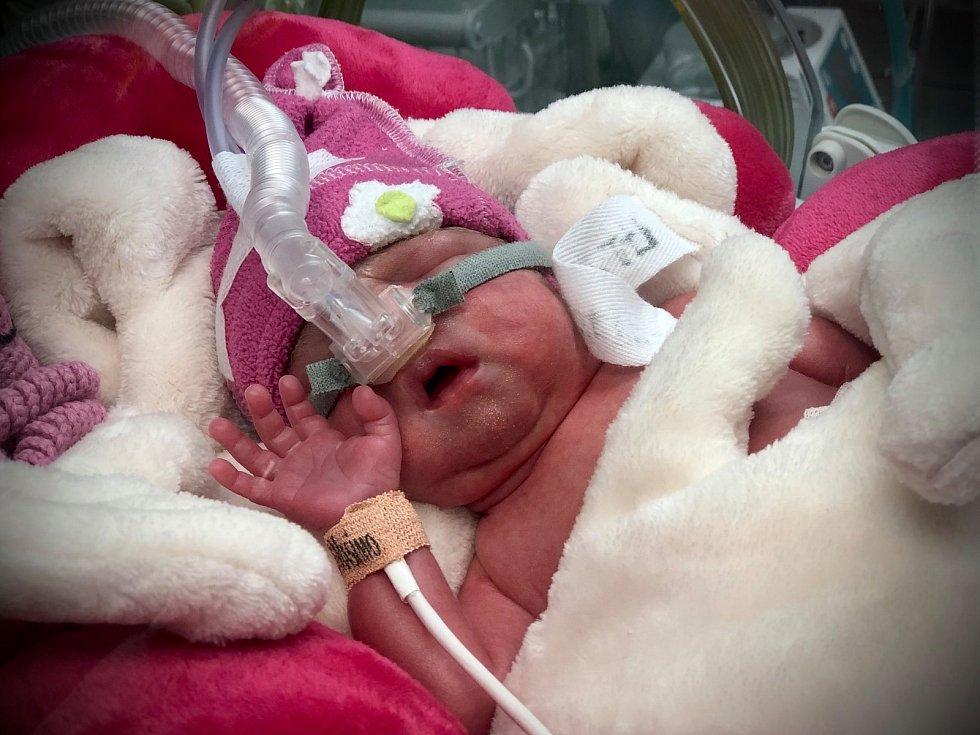 Zuzana, Anna a Miroslav se narodili v ostravské fakultní nemocnici zdravotní sestřičce z Nemocnice Podlesí v Třinci.