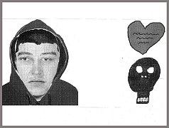 Identikit muže, po kterém policie pátrá. Na snímku vpravo tetování, které popsala dívka.