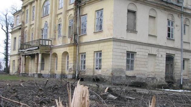 Až milionovou pokutu za nepovolené kácení v zámeckém parku může udělit Česká inspekce životního prostředí.