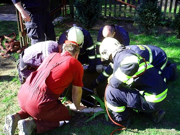 U neobvyklého případu zasahovali ve středu 22. dubna před devátou hodinou dopoledne profesionální hasiči na zahradě rodinného domku v Pržně. Vytahovali štěně vlčáka ze studny.