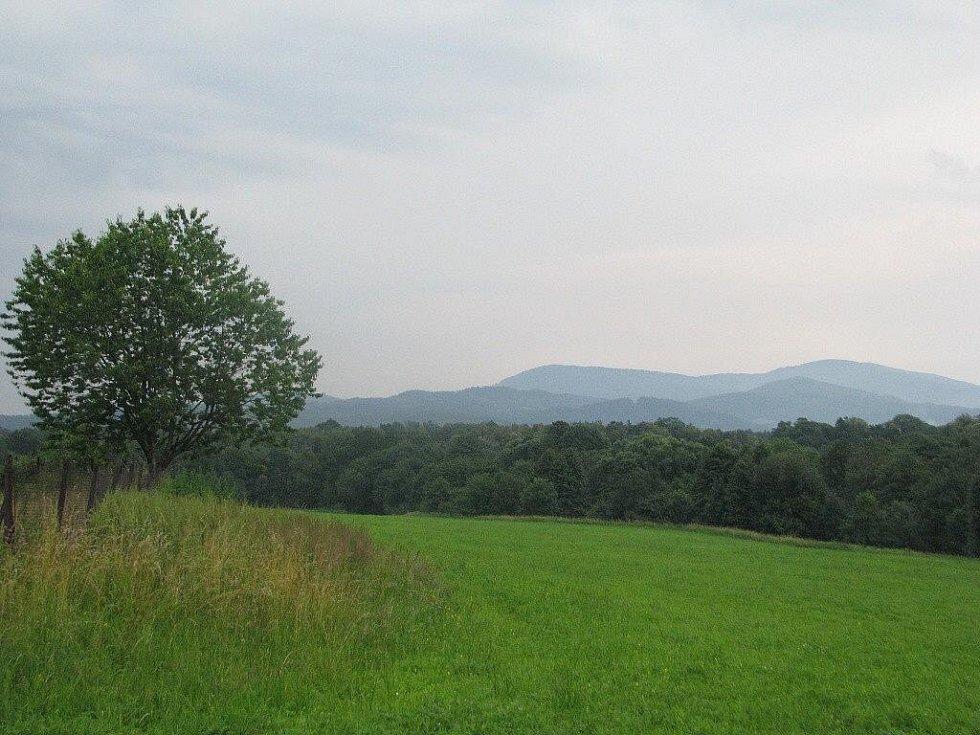 Pozemky v Oldřichovicích, na nichž chce firma Agricoop stavět velkokapacitní kravín pro 500 dojnic.