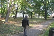 Malý park u kostela Všech Svatých. V minulosti zde býval hřbitov, který sloužil potřebám Místku déle než sto let. Úředně došlo k ukončení pohřbívání v roce 1892.