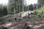 Na Prašivé uklízela lesní škola Hnízdo.