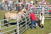 Dolní Lomné se 1. října konala akce s názvem Podzimní jarmark, jehož součástí byl trh domácích zvířat.