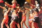 Miss Steel 2008 se 25. dubna večer stala osmnáctiletá studentka Soňa Bocková z Třince.