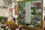 Výstava v Raškovicích