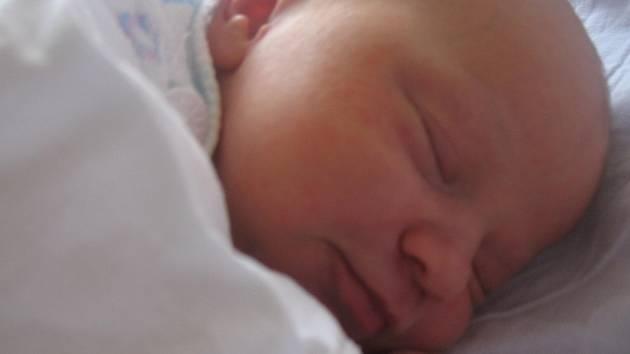 Fotku své dcerky Hanky Moráňové nám poslala její maminka Renata Moráňová z Ropice. Hanička se narodila se narodila v třinecké nemocnici 1.11.2007. Vážila 3,7 kg a měřila 48 cm. Poděkování maminky patří personálu porodního i novorozeneckého oddělení.