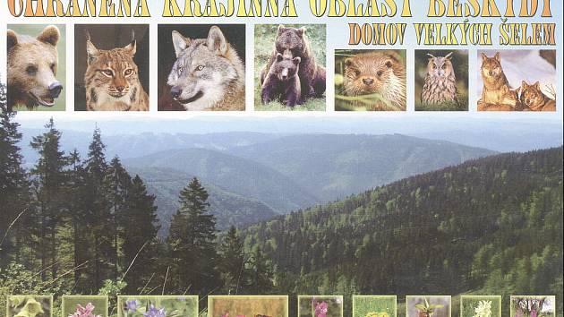Mezi aktivity podpořené Nadací OKD patří také monitoring velkých šelem v Beskydech.