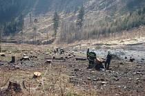 Požár šesti hektarů různého lesního porostu u Palkovic.