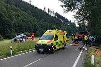 Auto u Dolní Lomné narazilo do stromu.  Foto: ZZS MSK