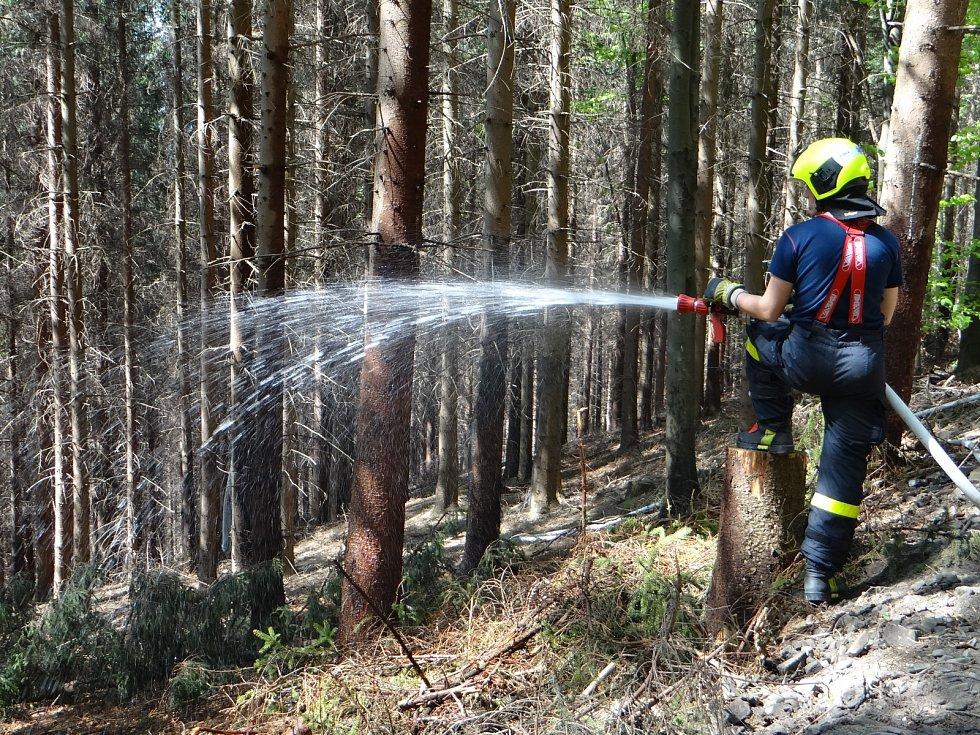Teoretická část Výcviku hašení lesních požárů v projektu EU Bezpečné pohraničí.