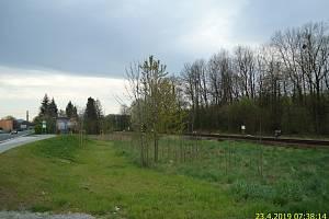 Pozemek v jižní části obce Staré Město.