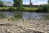 V korytech řek je kvůli suchu málo vody.