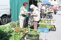 Náměstí Svobody v Místku patřilo především prodejcům trvalek, letniček i balkónovým květinám. Lidé nakupovali také sazenice rajčat, paprik, salátů nebo bylinky.