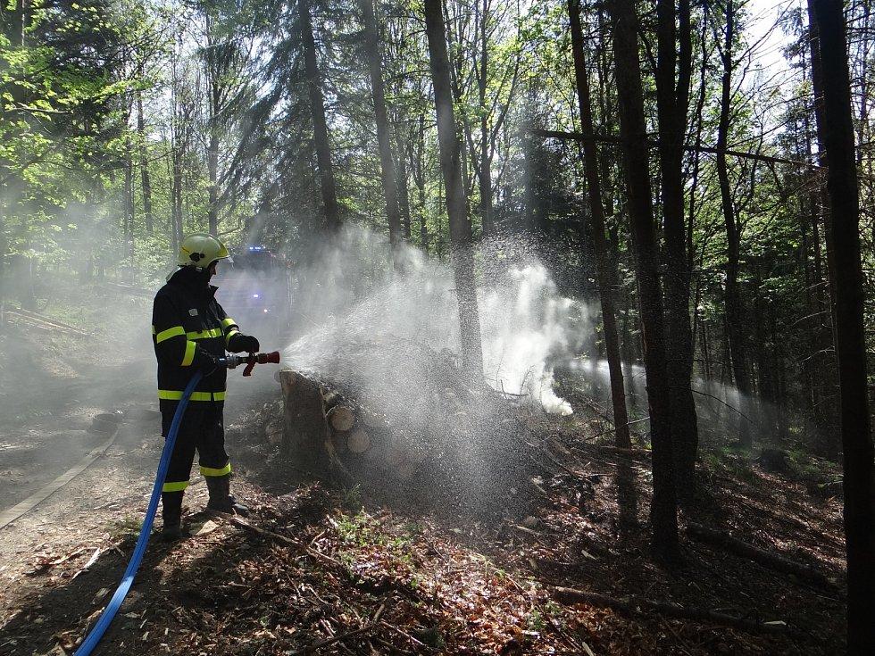 Praktická část Výcviku hašení lesních požárů v projektu EU Bezpečné pohraničí.