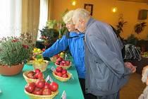 Výstava květin, ovoce a zeleniny ve Frýdlantě nad Ostravicí.