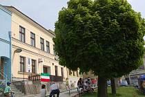 Na včerejším Dni s Deníkem nalezla část diváků úkryt  před žhavým sluncem právě pod stromy na náměstí.