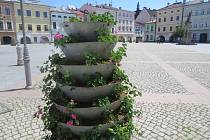Květinová výzdoba ve Frýdku-Místku. Ilustrační foto.