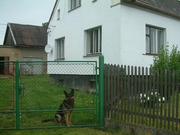 V tomto domku v Žermanicích řádili tři ozbrojení muži, kteří v garáži (vlevo nahoře) vyráběli pervitin. Pachatele před zásahem policie neochránil ani statný vlčák.
