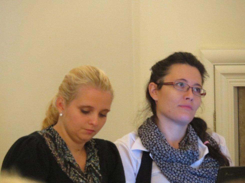Aukci výtvarných děl pořádala v pátek 9. října Charita Frýdek-Místek. Už pátý ročník se konal v areálu frýdeckého zámku.