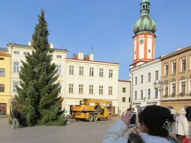 Vánoční strom ve Frýdku-Místku na snímku z roku 2014.