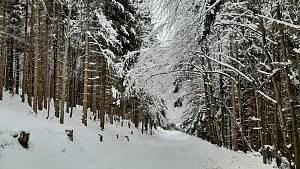Z výletu na Kamenitý, Horský hotel Kozubová a sjezdovku Armáda v Dolní Lomné.