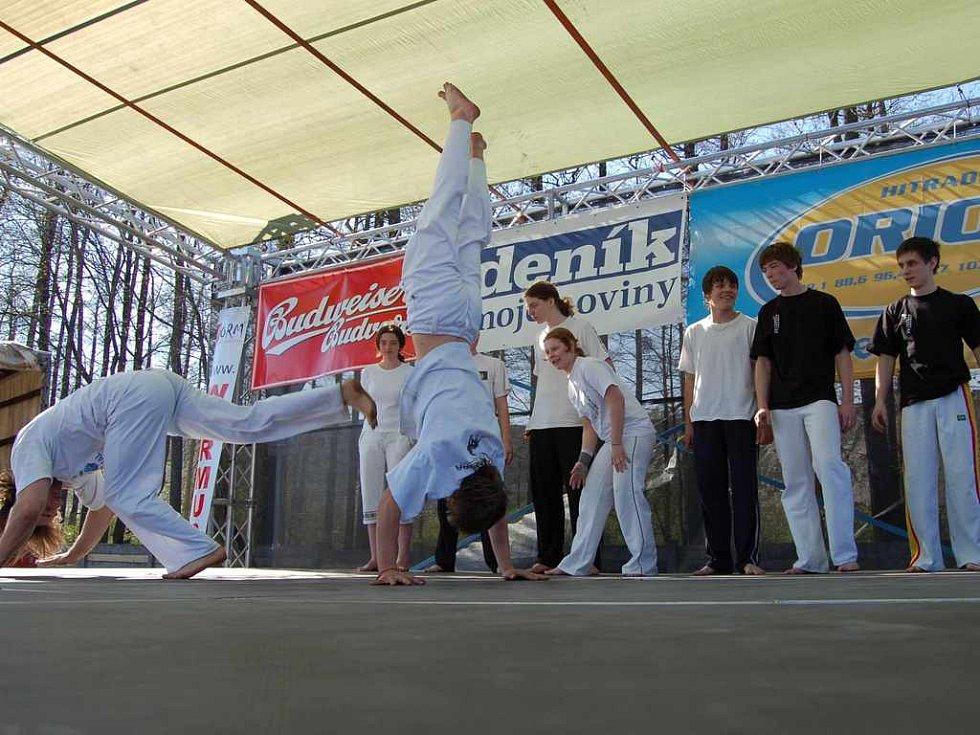 Vystoupení členů souboru Capoeira bralo dech.