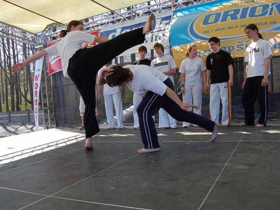 Vystoupení Capoeiry