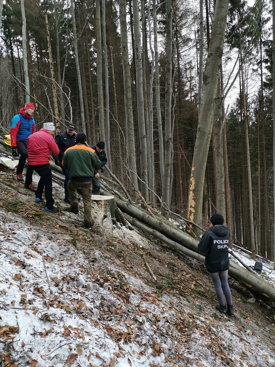 Při nehodě v lese zemřel dělník, záchranáři už mu nemohli pomoci.
