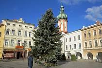 Vánoční strom na místeckém náměstí. Archivní snímek.