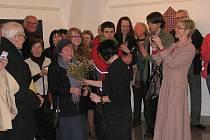 Frýdecká Galerie Langův dům zahájila 25. března výstavu.