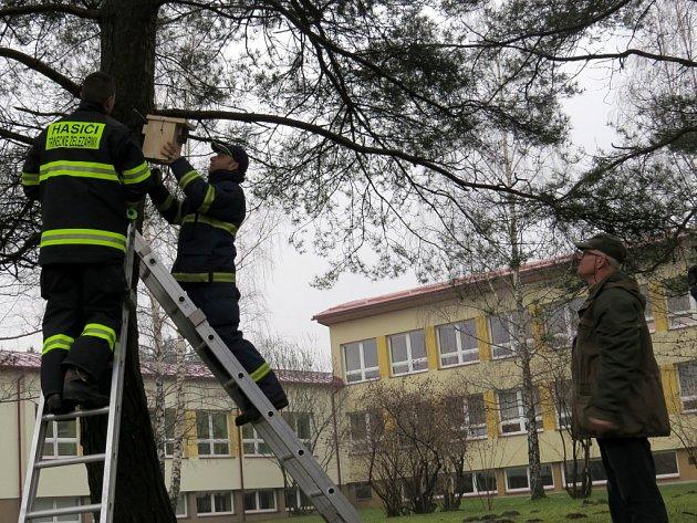 Hasiči připevňují budku na strom u ZŠ Slezská v Třinci.
