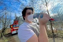 Záchrana papouška v úterý 30. března 2021 v Paskově.