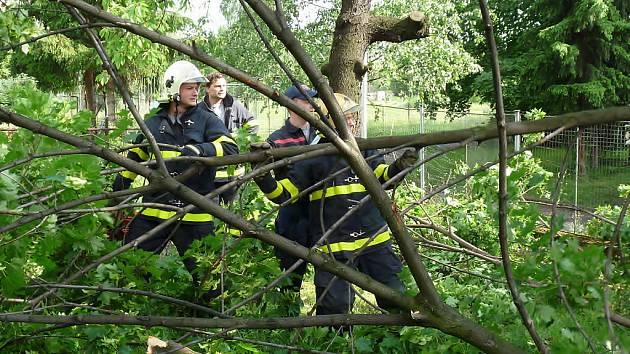 Páteční večerní vichřice zlomila javor. Větve ohrožovaly okolojdoucí po chodníku kolem frýdeckom-místecké 9. ZŠ. Foto ze sobotního dopoledne