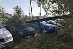 Kvůli silnému větru spadl strom na zaparkované auto na sídlišti Slezská ve Frýdku-Místku.