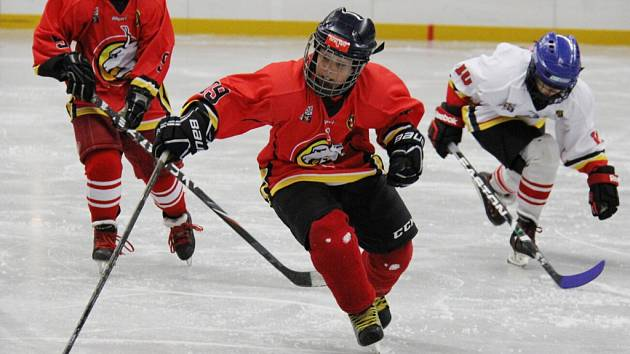 Slavnostnímu otevření nové sportovní haly Polárka předcházelo představení žáčků místního hokejového klubu HC Frýdek-Místek.