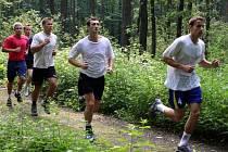 Házenkáři nyní hlavně běhají.