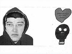 Identikit muže z frýdecko-místeckého případu, po kterém policie pátrá. Na snímku vpravo tetování, které popsala dívka.