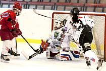 Karvinské hokejistky na Slavii nestačily. Mají stříbro.