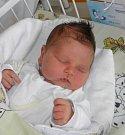 Druhorozený syn Vojtíšek Trzaskalik se narodila 20. ledna mamince Petře Svobodové z Karviné. Po narození chlapeček vážil 3740 g a měřil 47 cm. Bráška Kubíček se na miminko moc těší.