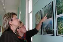 Výstava představuje fotografie z povodní