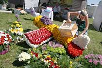 Pavla Kubošová právě dokončila se svými kolegy dílo, ale v parném dnu květiny musela neustále polévat.