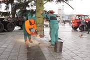 Stavění vánočního stromu na náměstí Republiky v centru Havířova.