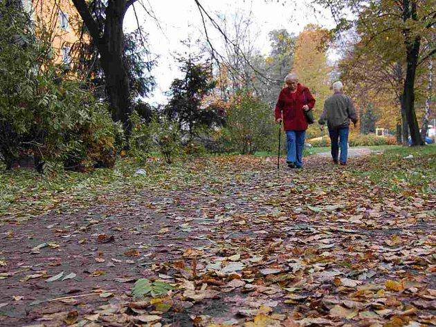 Spadané mokré listí je pro chodce noční můrou.