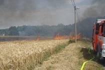 Požár zničil úrodu na poli.