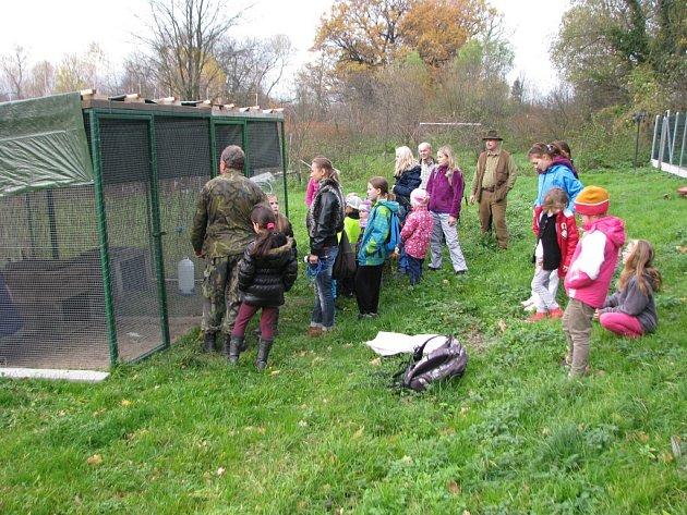 Mladí ochránci přírody odchovali bažanty, které vypustili do přírody.