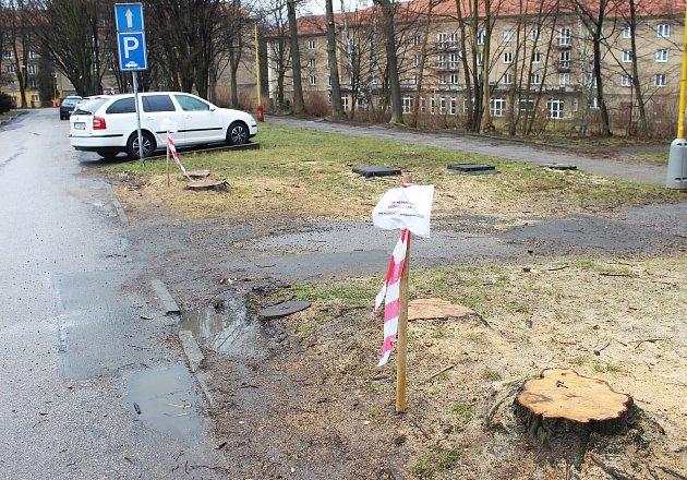 Kácení stromů vyvolává debaty obyvatel města na sociálních sítích. Na snímku stromy pokácené ve Stavbařské ulici, kde má vyrůst nové parkoviště.
